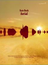 Bush Kate - Aerial - Pvg