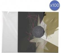 Enova Hifi Pochette Vinyle 33t - Pev 100