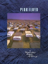 Pink Floyd - A Momentary Lapse Of Reason Pvg