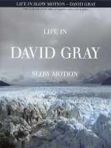 Gray Davd - Gray David Life In Slow Motion - Pvg