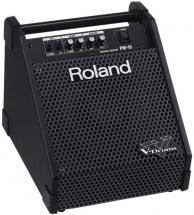 Roland Pm-10 - 30w