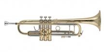 Bach 19043 - Sib Stradivarius Vernie