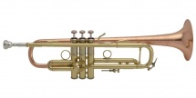 Bach Lr190-43b - Sib Stradivarius Pavillon Bronze Vernie Branche Inversee