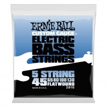 Ernie Ball Electric Bass Cordes 45-130 2810