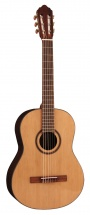 Cort Ac160 Natural Gloss