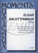 Elgar - Salut D