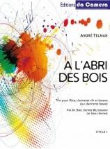 FLUTE Flûte, Clarinette et Basson : Livres de partitions de musique