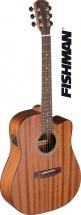 Jn Guitars Dev-dcfi E/a Dread Gt Cw-sld Maho/maho