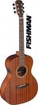 Jn Guitars Dev-pfi E/a Parlor Gt-solid Maho/maho