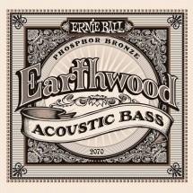 Ernie Ball Earthwood Acoustic Bass 45-95 2070