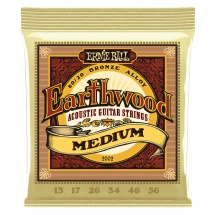 Ernie Ball Earthwood Medium 13-56 2002