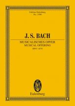 Bach J.s. - Musical Offering  Bwv 1079 - Chamber Orchestra