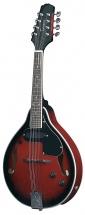 Tenson Mandoline Folk Tenson A-1e Black Cherry