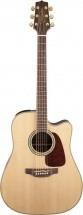 Fender Gd71ce Natural