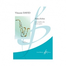 Vincent David - Eclats D