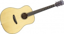 Breedlove Discovery Dc-d21