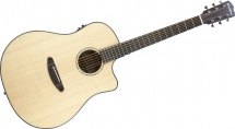 Breedlove Pursuit Ps-d21-e