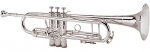 King Sib Professionnelle  2055t Silver Flair Argentee
