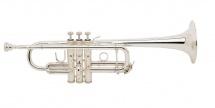 Bach C180l 239/25c Argentee