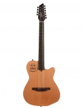 Godin A10 Natural Steel Mahogany Cedar + Housse