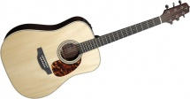 Takamine Series Speciales Dreadnought Electro