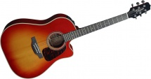Takamine Series Speciales Dreadnought Cutaway Electro