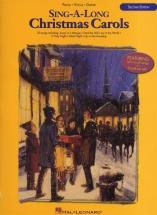 Sing-a-long Christmas Carols 2nd Edition - Pvg