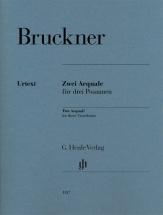 Bruckner Anton - Deux Aequale Pour Trois Trombones