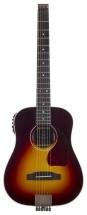Traveler Guitar Ag-450eq