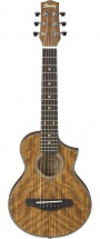 Ibanez Ewp14wb Opn Open Pore Natural + Housse