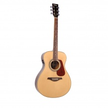 Vintage Guitars Ve300n E/a Natural
