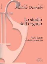 Molfino L. , Demonte A. - Lo Studio Dell