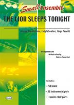 Lion Sleeps Tonight - Ensemble Musical (reduit)