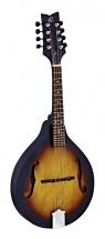 Ortega Flat Mandolin Rma5 Vintage Sunburst