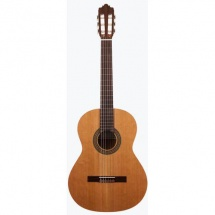 Prodipe Guitars Recital 200