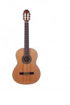Prodipe Guitars Starter Primera 4/4