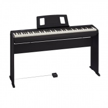 Roland Fp-10 + Stand