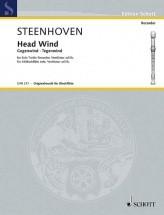 Steenhoven K. - Head Wind - Flute A Bec