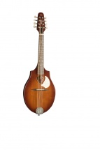 Seagull S8 Mandolin Burnt Amber Sg