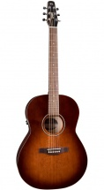 Seagull Guitare Entourage Folk Burnt Umber Qit
