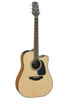 Fender Gd10ce Natural