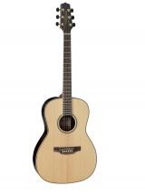 Fender Gy93e Natural