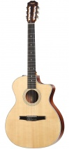 Taylor Guitars 214ce-n Esn Nylon Grand Auditorium