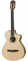 Taylor Guitars 412ce-n Esn Grand Concert