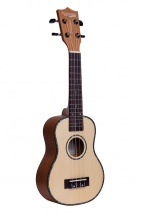 Tanglewood Concert Tustc Spruce