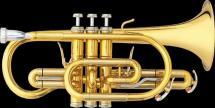 Cornet Sib Professionnel B&s 3142/2-gl Brochon (verni)