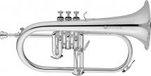 Jupiter Jfh1100rs