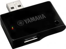 Yamaha Dbt-01