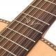 PAUL BRETT SIGNATURE E/A GUITAR - 12 STRING + CASE