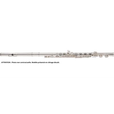 Flûtes traversières Tête et tube argent